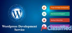 Qdexi Technology Brings You Wide Range of WordPress Development Service