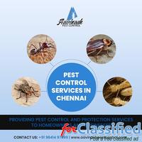 Pest Control Services in Chennai - Aavinashpestcontrol